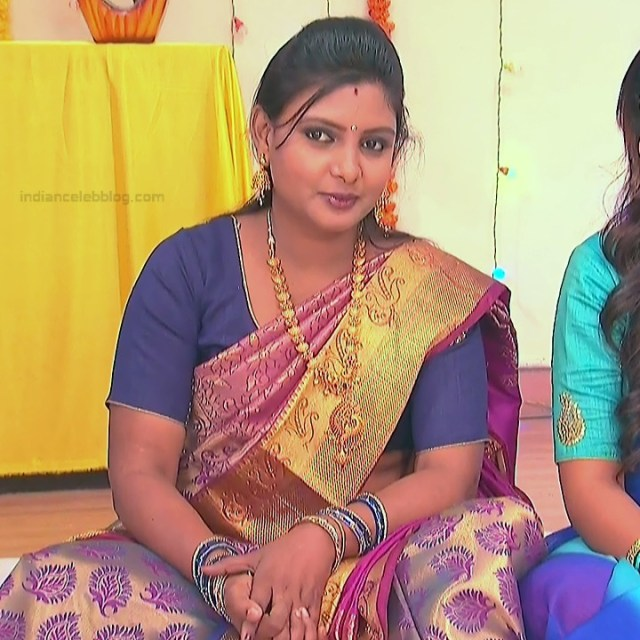Telugu TV Actress_MCmplS2_13_Hot saree photo