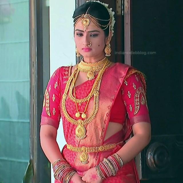 Telugu TV Actress_MCmplS2_22_Hot saree photo