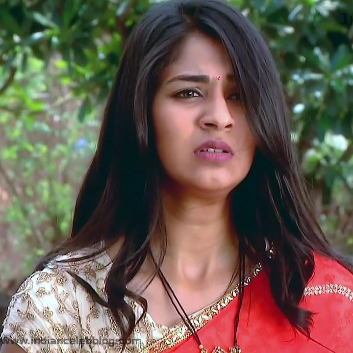 Vidhi Pandya_Hindi TV Actress Ud-S2_10_Hot saree pics