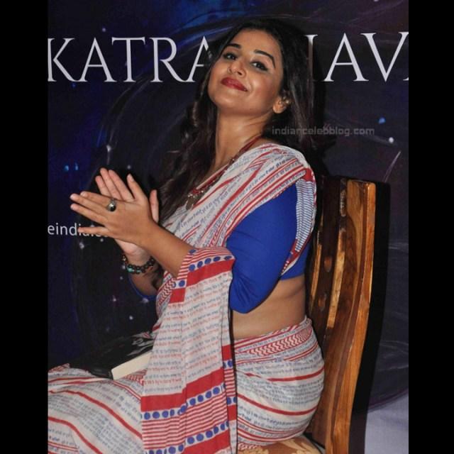 Vidya Balan_Bollywood Actress Event Pics - S1_20_Hot Saree