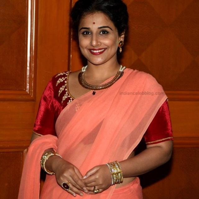 Vidya Balan_Bollywood Actress Event Pics - S1_3_Hot Saree