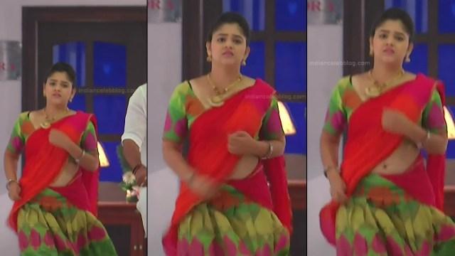 Telugu TV Actress_MCmplS2_7_Hot saree photo
