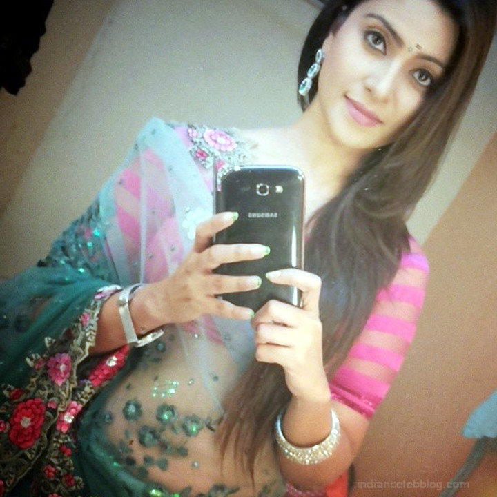 Aleeza Khan 035 Hindi TV Actress hot saree pic