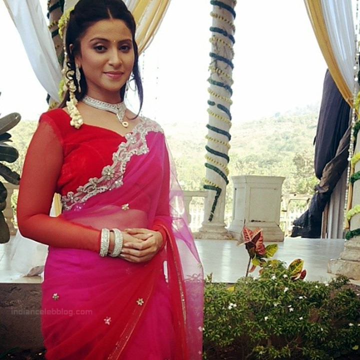 Aleeza Khan 037 Hindi TV Actress hot saree pic