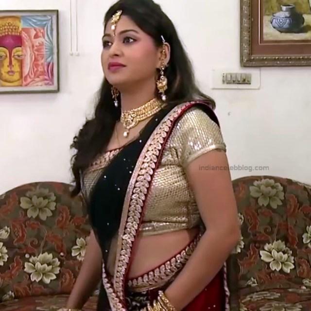 Nagashree Tamil TV Actress Chandralekha S1 1 hot saree photo