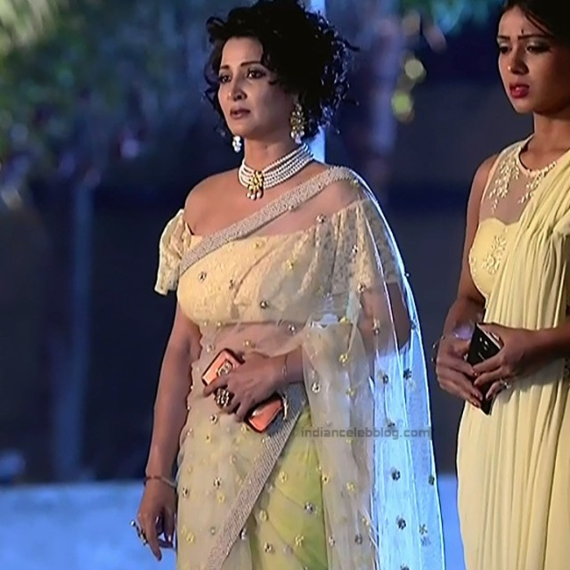 Sonica Handa Hindi TV Actress SavitriDCHS1 15 hot saree pics