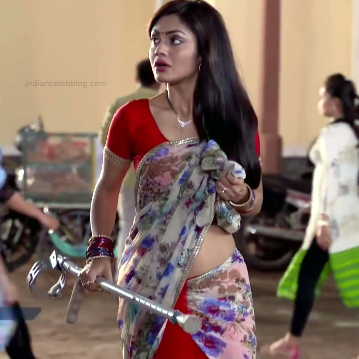 Sreejita De Hindi TV Actress TumhiHBS2 4 Hot Saree Photo