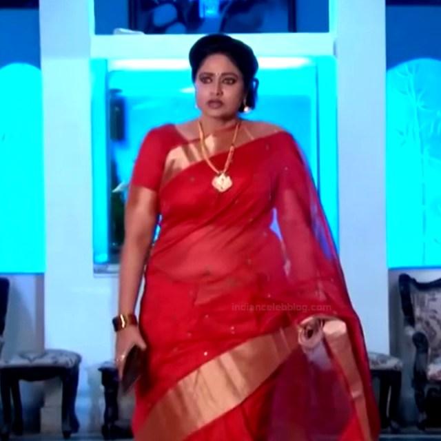 Telugu TV serial mature actress Comp2 1 hot saree photo