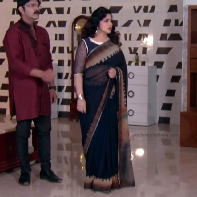 Telugu TV serial mature actress Comp2 10 hot saree photo