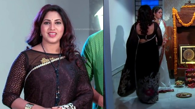 Telugu TV serial mature actress Comp2 14 hot saree photo