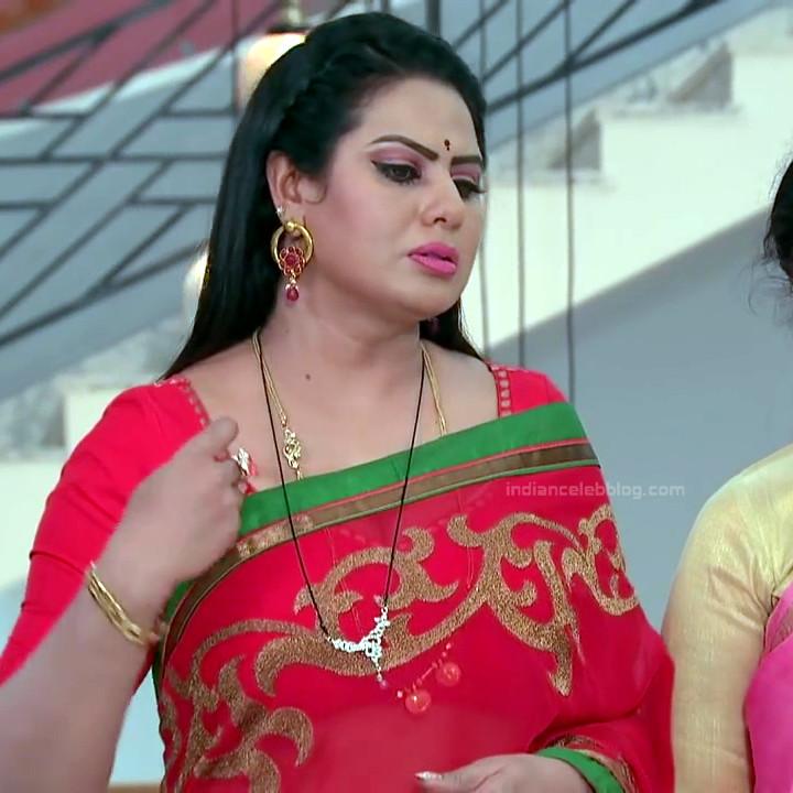 Telugu TV serial mature actress Comp2 20 hot saree photo