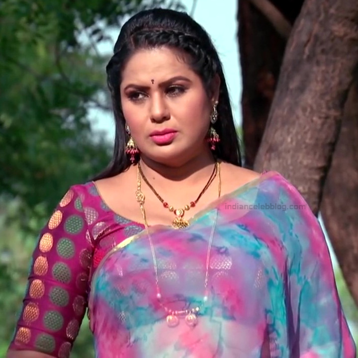 Telugu TV serial mature actress Comp2 24 hot saree photo