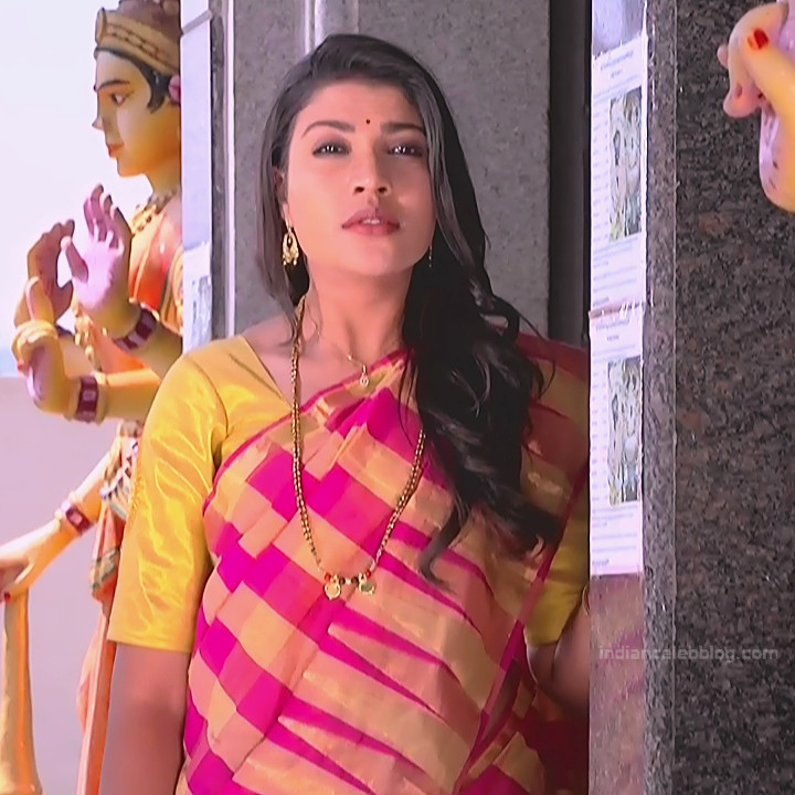 Chandana Raghavendra Kannada TV Actress Sindoora S2 17 hot saree pics