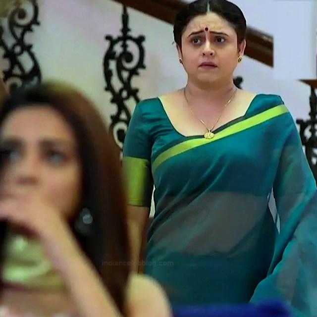 Hindi TV actress mature CompS3 12 saree photo