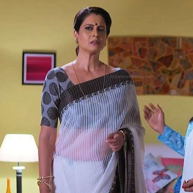Hindi TV actress mature CompS3 16 saree photo