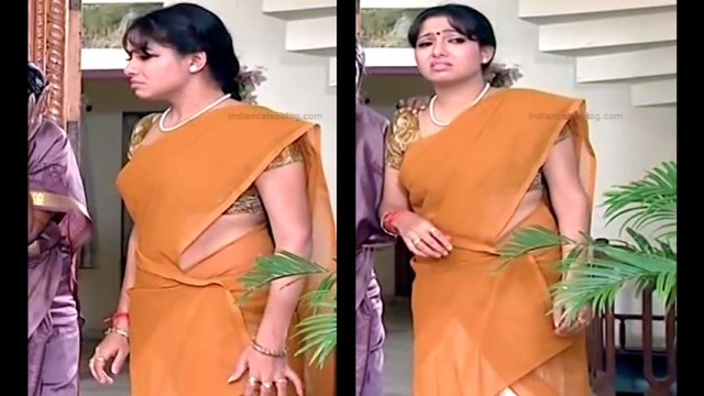 Minnal Deepa Tamil TV actress PonDTS1 3 hot saree photos