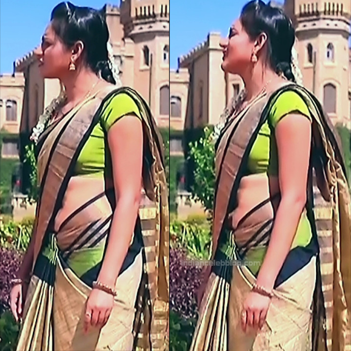 Ranjani Raghavan Kannada TV actress PuttGMS2 8 hot sari pics