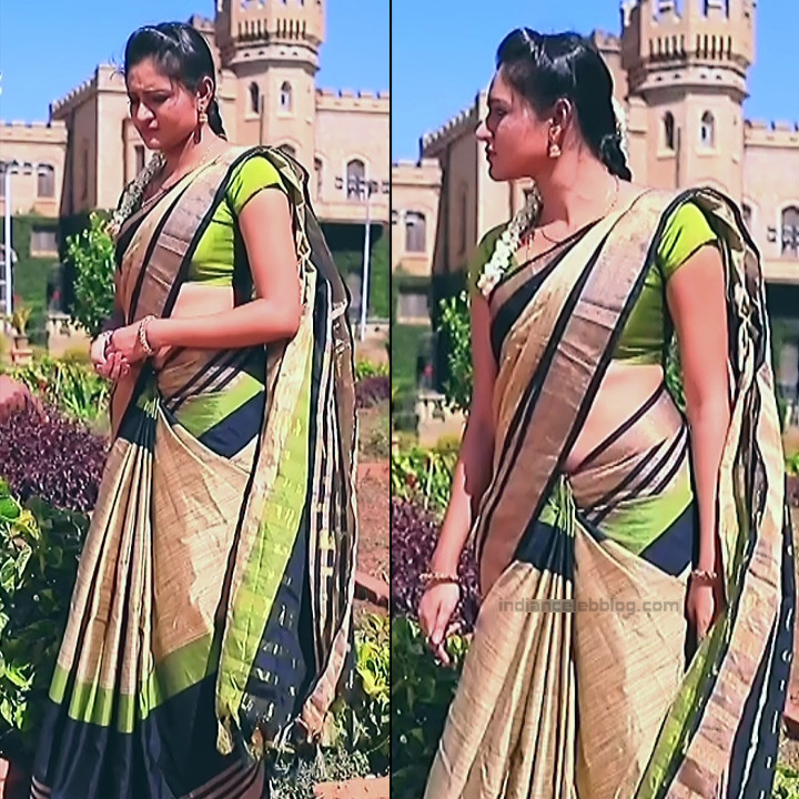 Ranjani Raghavan Kannada TV actress PuttGMS2 9 hot sari pics
