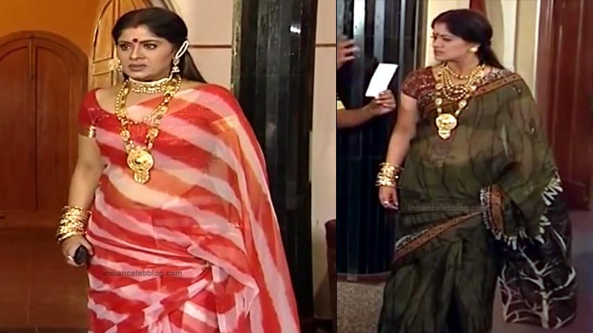 Sudha chandran Tamil TV actress PonDTS1 2 hot sari photo