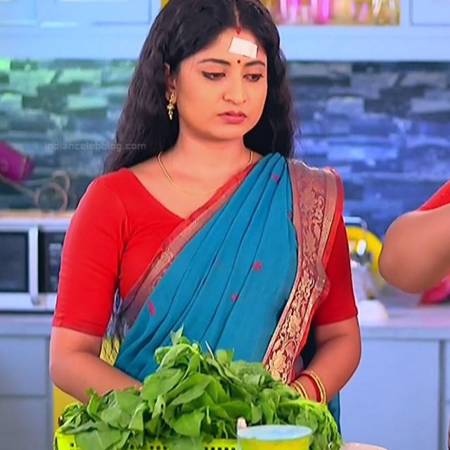 Bengali TV serial actress CompGS1 15 hot saree photo