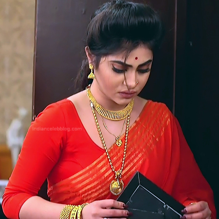 Bengali TV serial actress CompGS1 3 hot saree photo