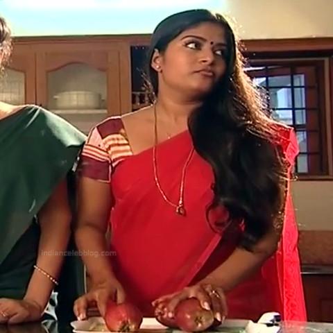 Neepa tamil tv actress PonDTS1 12 hot saree photo