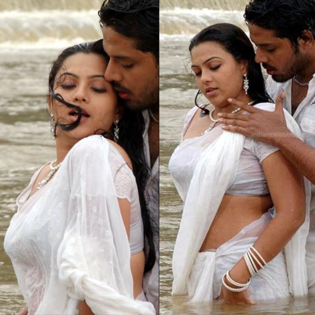 Shwetha Bandekar Tami TV actress CTS1 5 hot saree movie pics