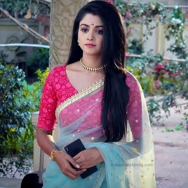 Tanvi Dogra Hindi serial actress JijiMS1 16 sari photo