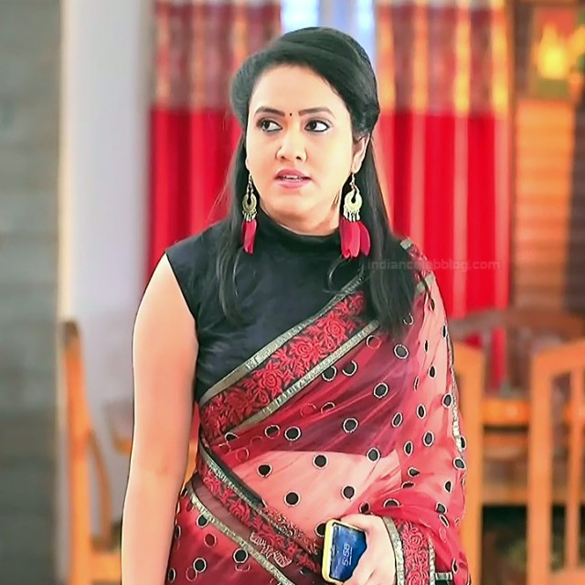 Sindhu Kalyan kannada tv actress PuttaGMS2 1 hot saree photo