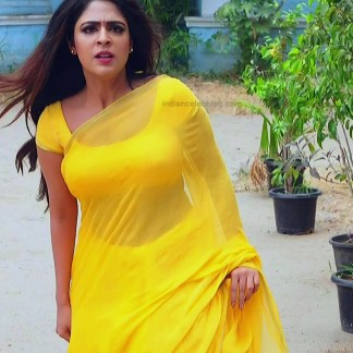 Malavika wales tamil tv actress Nandini S1 4 hot sari photo