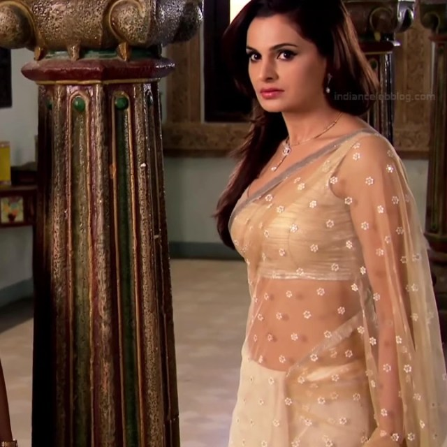Monica bedi hindi tv actress saraswati CYTDS1 15 hot sari photo