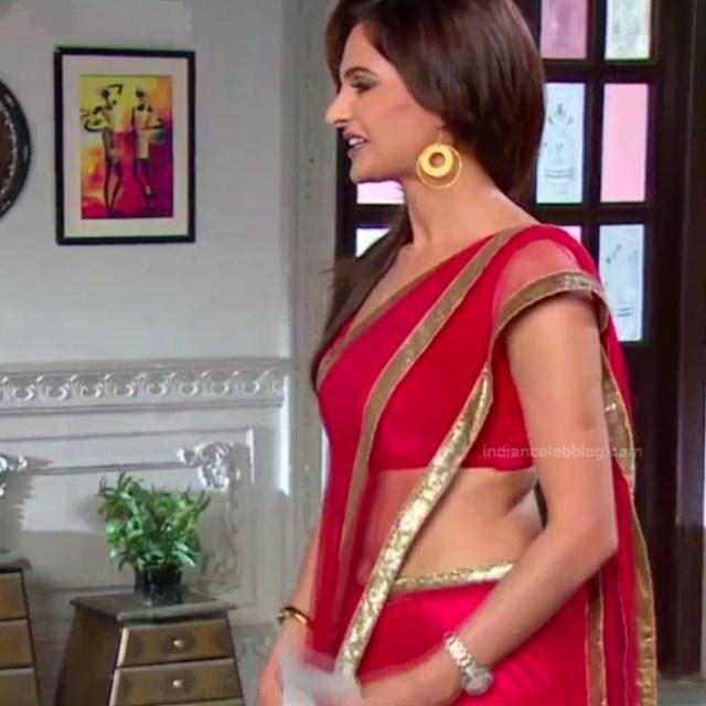 Monica bedi hindi tv actress saraswati CYTDS1 22 hot saree pics