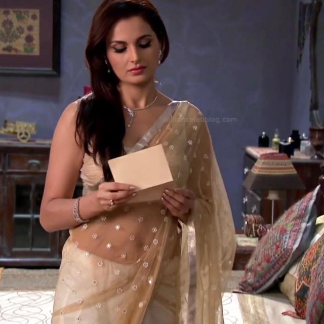 Monica bedi hindi tv actress saraswati CYTDS1 9 hot saree photo