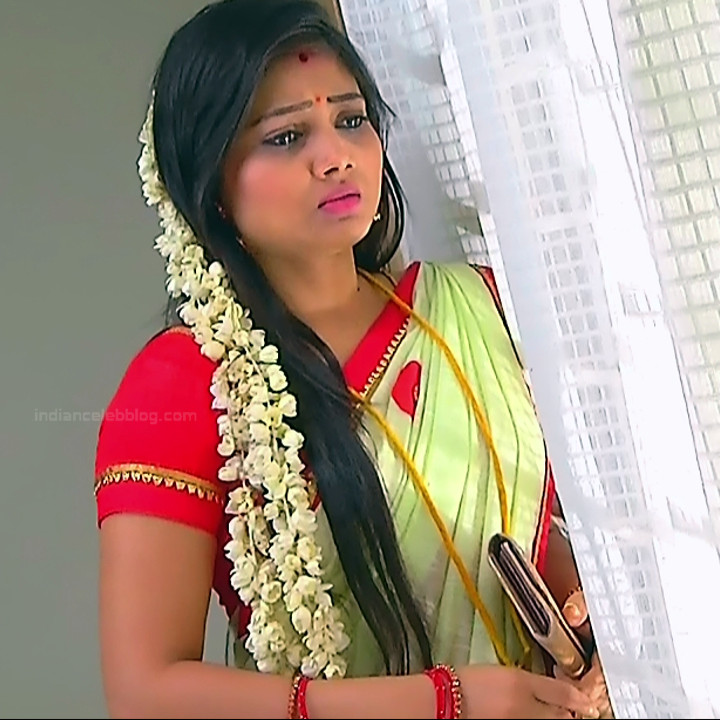 Priyanka nalkar tamil serial actress roja s1 18 sari photo