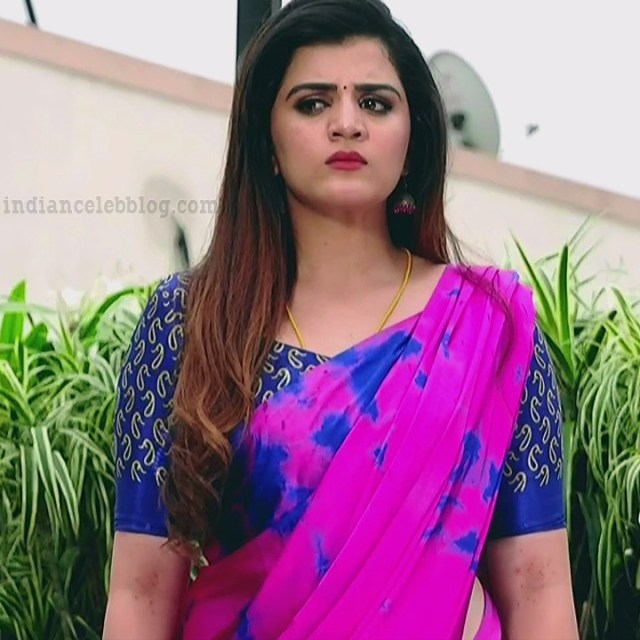Aishwarya gowda telugu tv actress Akka MS1 13 saree photo