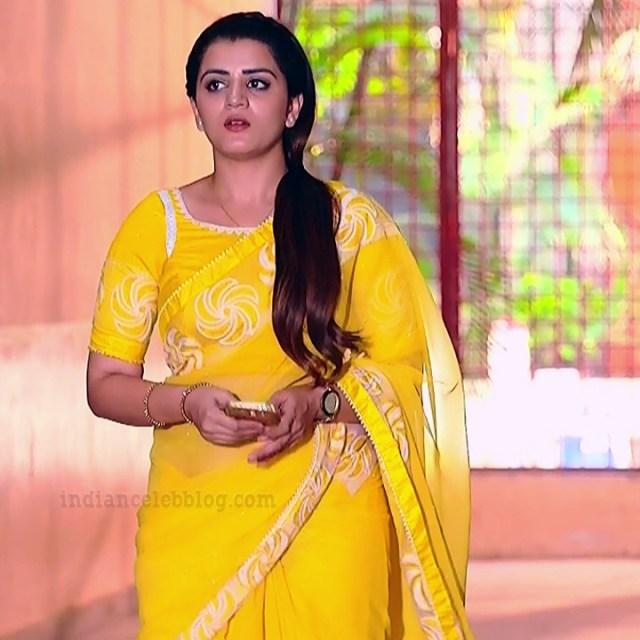 Aishwarya gowda telugu tv actress Akka MS1 14 saree photo