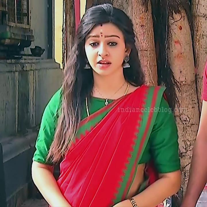 Divya ganesh tamil tv actress sumangali S5 9 sari photo
