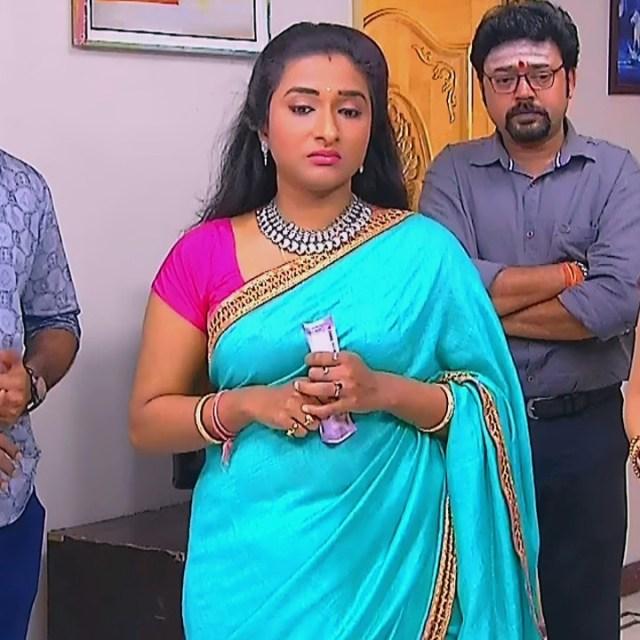 Ramya shankar Tamil TV actress Roja S1 10 Sari photo