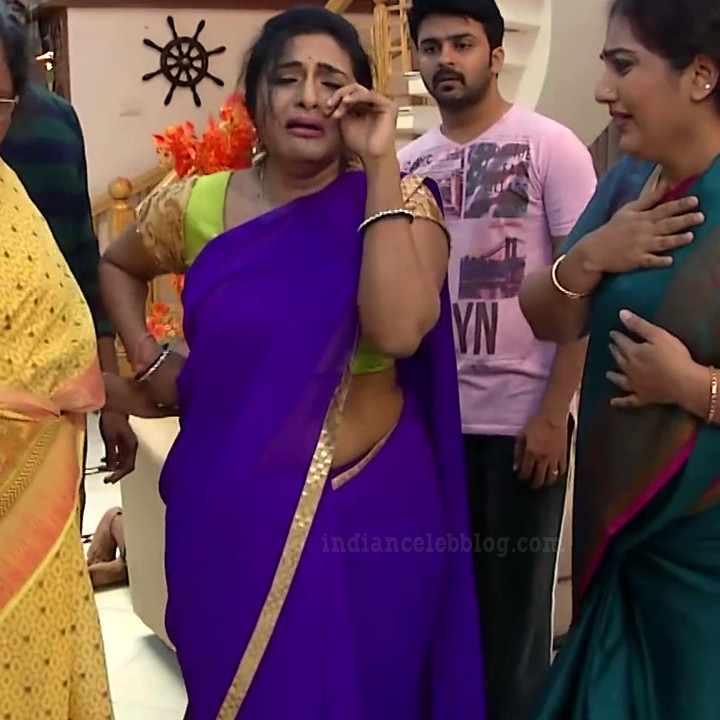 Ramya shankar Tamil TV actress Roja S1 13 Saree photo