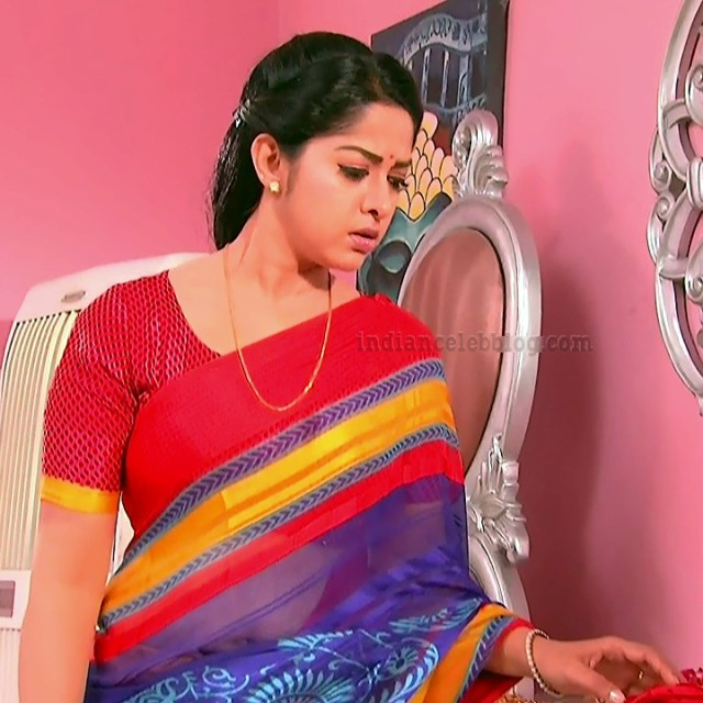 Jyothi Telugu TV serial actress MscC5 5 sari photo