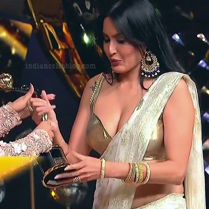Kamya-punjabi-in-sari-kesh-king-gold-awards-2018_10