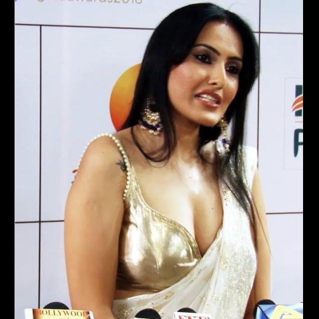 Kamya-punjabi-in-sari-kesh-king-gold-awards-2018_3