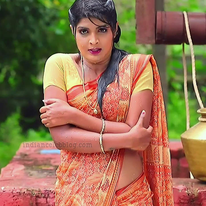 Manya anand kannada TV actress BiliHS2 3 saree photo