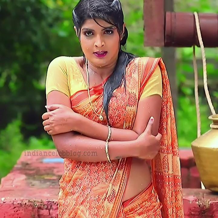 Manya anand kannada TV actress BiliHS2 3 saree photo