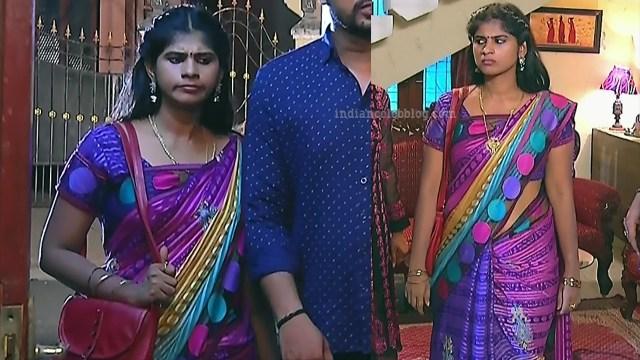 Tamil TV serial actress MscCmplS1 1 saree pics