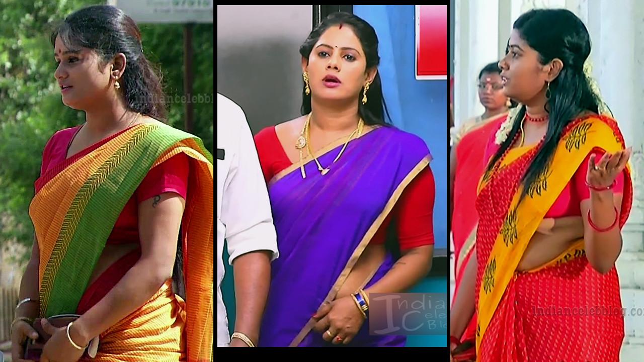 Tamil TV serial actress pics in saree Mix