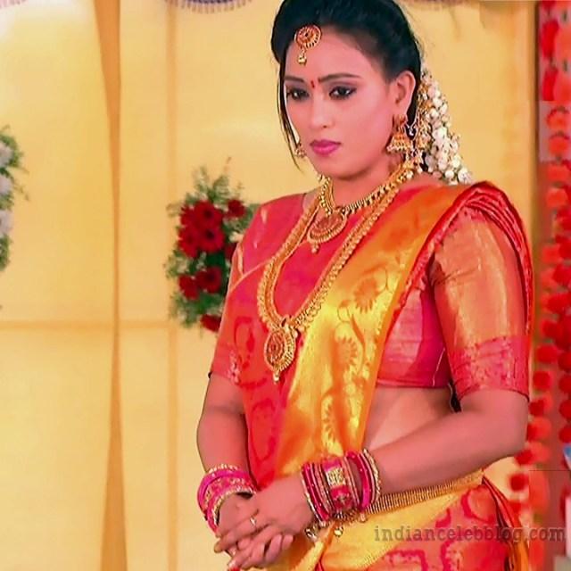 Telugu TV serial actress MscC5 12 saree photo