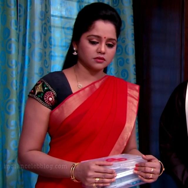 Telugu TV serial actress MscC5 16 saree pic