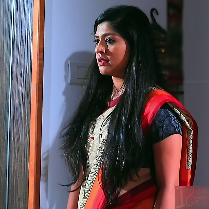 Meghana shankarappa kannada tv actress Kinnari S4 10 saree photo