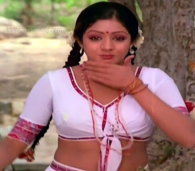 Sridevi ranuva veeran tamil movie still s1 12 hot photo